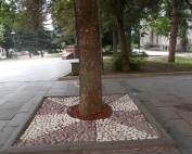 dekoracija na drvored so ukrasen kamen (5) (Small)